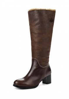 Сапоги, Ascalini, цвет: коричневый. Артикул: AS006AWJNY64. Женская обувь / Сапоги
