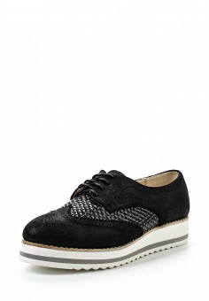 Ботинки, Clowse, цвет: черный. Артикул: CL020AWSTE37. Женская обувь / Ботинки / Низкие ботинки