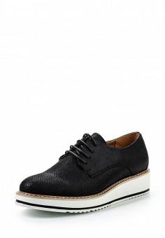Ботинки, Clowse, цвет: черный. Артикул: CL020AWSTE66. Женская обувь / Ботинки / Низкие ботинки