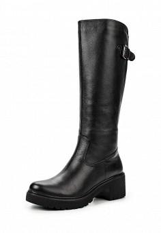 Сапоги, Ekonika, цвет: черный. Артикул: EK002AWMKN43. Женская обувь / Сапоги