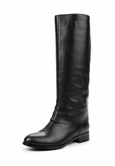 Сапоги, Ekonika, цвет: черный. Артикул: EK002AWMZN39. Женская обувь / Сапоги