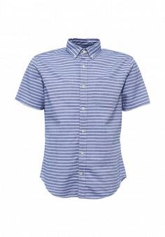 Рубашка, Gap, цвет: голубой. Артикул: GA020EMPBN96. Мужская одежда / Рубашки