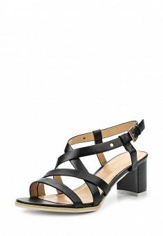 Босоножки, Inario, цвет: черный. Артикул: IN029AWQQY32. Женская обувь / Босоножки