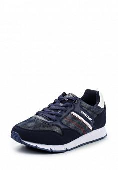 Кроссовки, Patrol, цвет: синий. Артикул: PA050AMQJY30. Мужская обувь / Кроссовки и кеды / Кроссовки