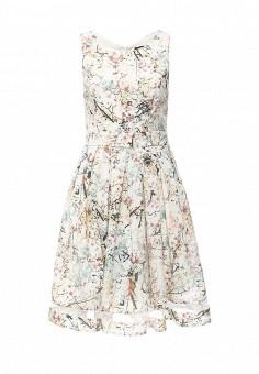 Платье, QED London, цвет: мультиколор. Артикул: QE001EWIVZ37. Женская одежда / Платья и сарафаны / Летние платья