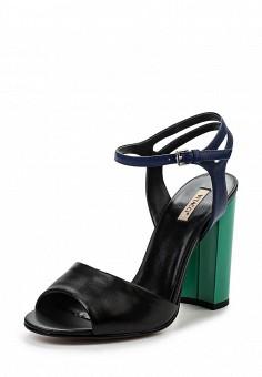 Босоножки, Vitacci, цвет: черный. Артикул: VI060AWPTS10. Женская обувь / Босоножки