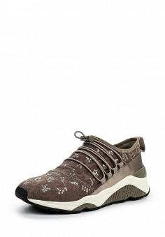 Кроссовки, Ash, цвет: коричневый. Артикул: AS069AWQQY74. Премиум / Обувь / Кроссовки и кеды