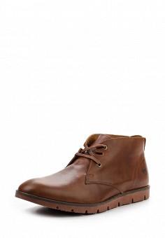 Ботинки, Beppi, цвет: коричневый. Артикул: BE099AMWAD53. Мужская обувь / Ботинки и сапоги