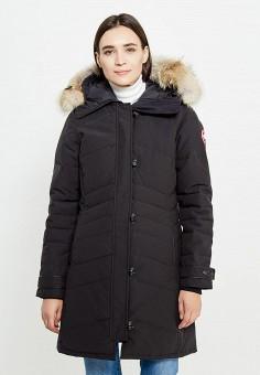 Пуховик, Canada Goose, цвет: черный. Артикул: CA997EWVBM58. Премиум / Одежда / Верхняя одежда / Пуховики и зимние куртки