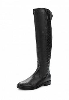 Сапоги, Conhpol-Bis, цвет: черный. Артикул: ER946AWUZM51. Женская обувь / Сапоги / Сапоги