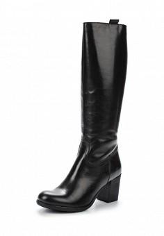 Сапоги, Simen, цвет: черный. Артикул: ER946AWUZN30. Женская обувь / Сапоги / Сапоги