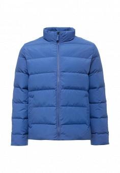 Пуховик, Gap, цвет: синий. Артикул: GA020EMTLX96. Мужская одежда / Верхняя одежда / Пуховики и зимние куртки