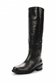 Сапоги, Giotto, цвет: черный. Артикул: GI514AWWHA36. Женская обувь / Сапоги