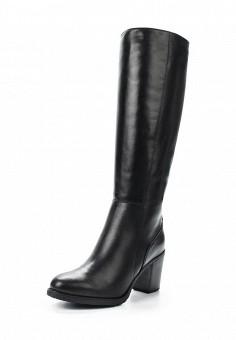 Сапоги, Ralf Ringer, цвет: черный. Артикул: RA084AWVSB78. Женская обувь / Сапоги