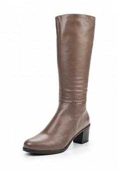 Сапоги, Salamander, цвет: коричневый. Артикул: SA815AWMDL53. Женская обувь / Сапоги