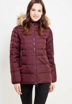 Пуховик, United Colors of Benetton, цвет: бордовый. Артикул: UN012EWWLY69. Женская одежда / Верхняя одежда / Пуховики и зимние куртки